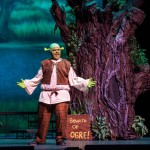 Shrek Jr The Musical Idaho Falls Youth Arts Centre Civic Auditorium 2015 004