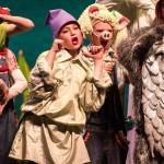 Shrek Jr The Musical Idaho Falls Youth Arts Centre Civic Auditorium 2015 008