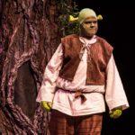 Shrek Jr The Musical Idaho Falls Youth Arts Centre Civic Auditorium 2015 012