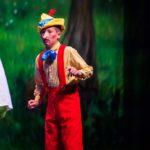 Shrek Jr The Musical Idaho Falls Youth Arts Centre Civic Auditorium 2015 015