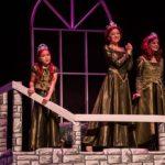 Shrek Jr The Musical Idaho Falls Youth Arts Centre Civic Auditorium 2015 055