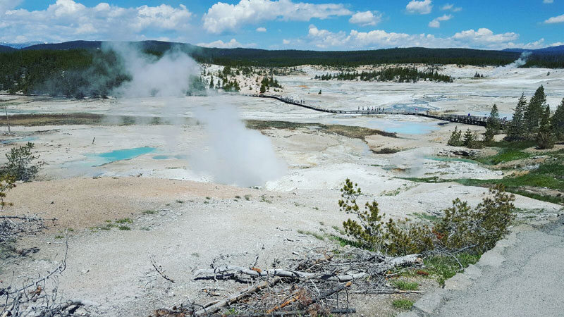 Man severely burned in Yellowstone hot spring