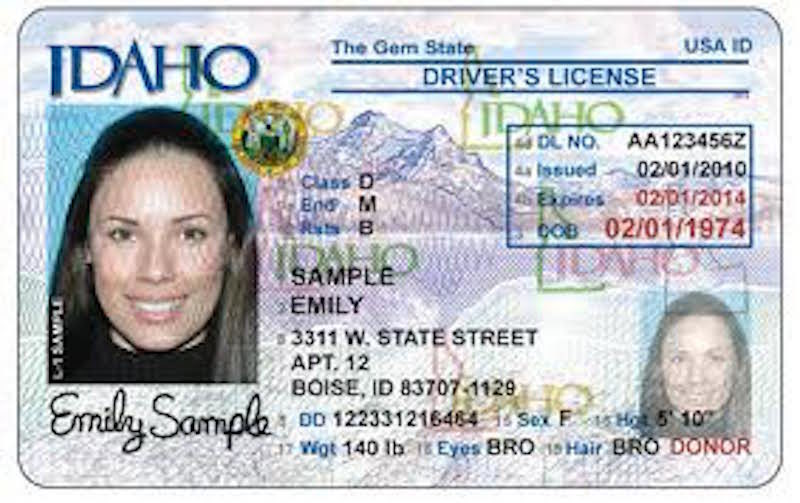 Driver's State License Idaho News Computer System East Down