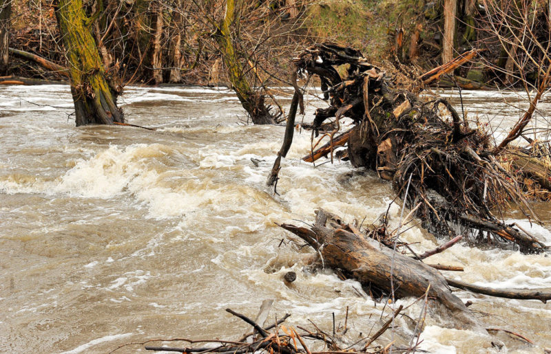 Ogden River flood warning extended to Saturday night