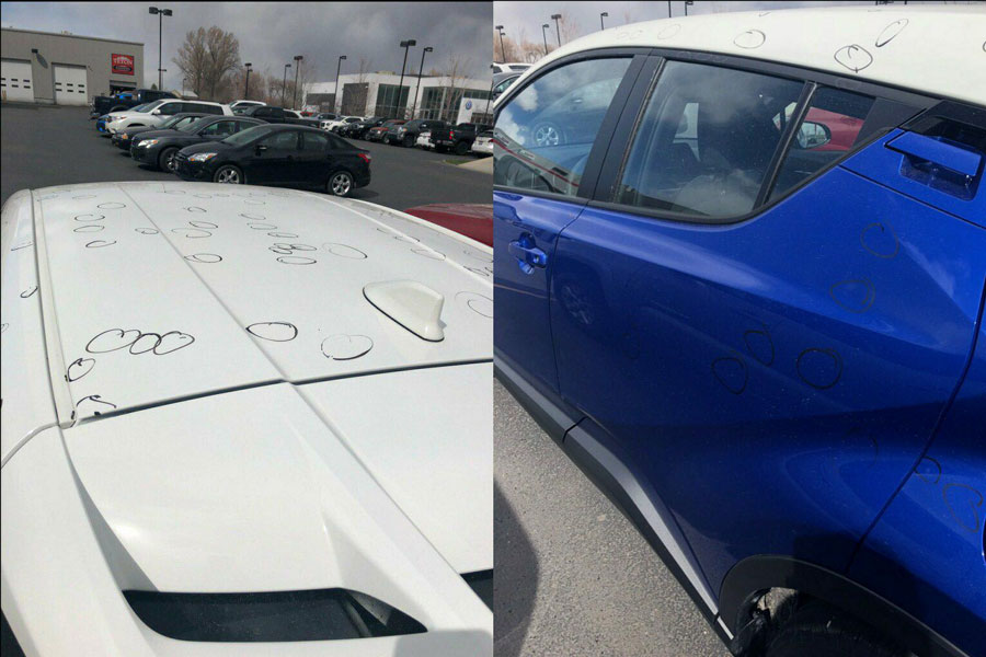 Marvelous Circles Indicating Hail Damage | Teton Volkswagen/Teton Toyota