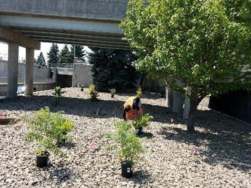 The following is a news release and photo from the city of Idaho Falls. - Idaho Falls Completes Smartscape Project, Promises To Save On Water