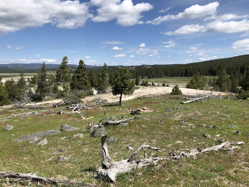 Tourism to Yellowstone creates $642 million in economic benefits, according to study - East Idaho News