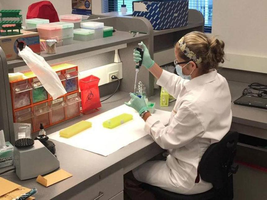 IMG DNA ISP lab