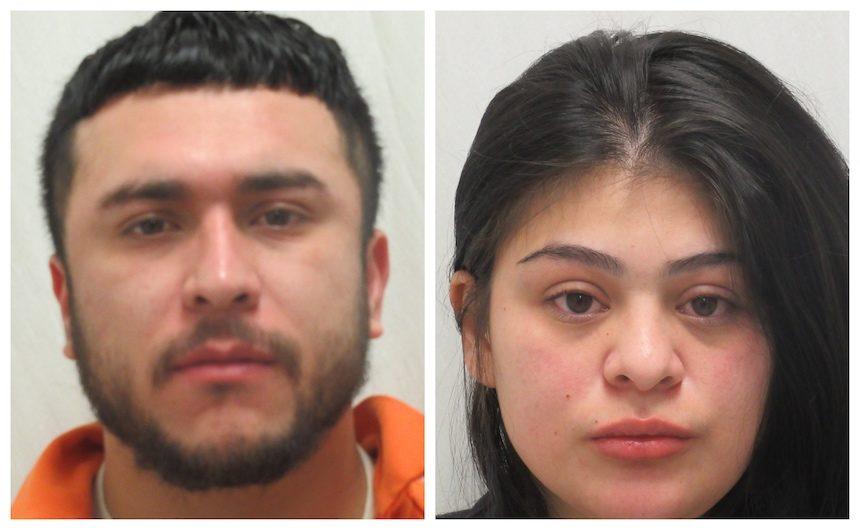 vehicle theft suspects