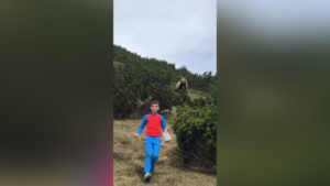 child-brown-bear-hike-cnn