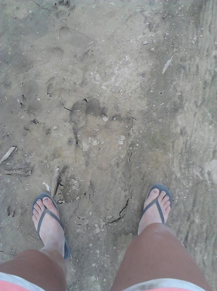 footprint Jessica Kaiser palisades