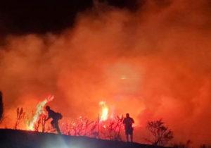 Wild Mountain Fire