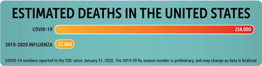Covid/flu death chart