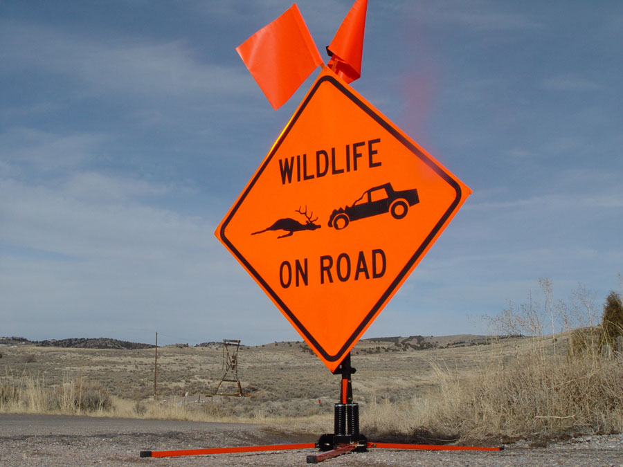 Idaho's wildlife collision salvage rule: what can you salvage? – East Idaho News