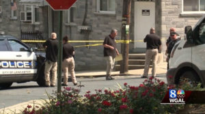 Police at scene after human head found in freezer